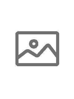 Zarządzenie Nr 29 2019 z dn. 4.10.2019 w sprawie wprowadzenia wewnętrznej procedury antymobbingowej w Małopolskim Centrum Biotechniki Sp. z o.o.